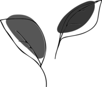 plant-black-and-white