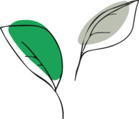leaves-colour