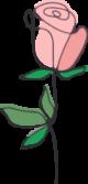 plant-care-icon