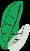 plant-leaf-1